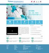 迈瑞生集团网站建设案例